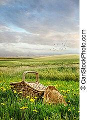 kosár, magas fű, piknik, kalap