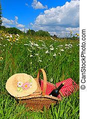 kosár, nyár, virág, piknik, mező
