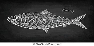 kréta, skicc, herring.