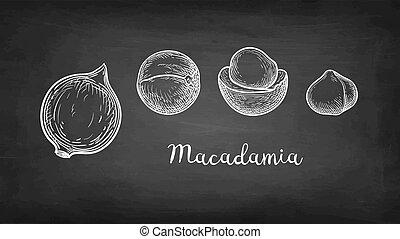 kréta, skicc, macadamia.