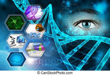 kutatás, orvosi tudomány, tudományos