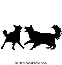 kutyák, verekszik