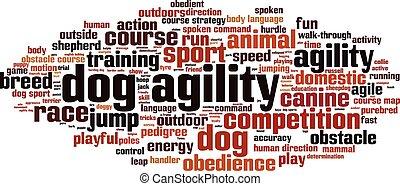 kutya, agility-horizon