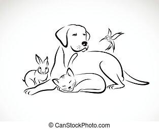 kutya, csoport, kisállat, macska, -, madár, elszigetelt, vektor, háttér, white nyúl