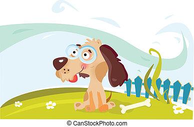 kutya, kert