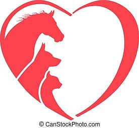 kutya, macska, állat lover, jel, ló