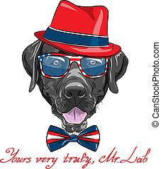 kutya, vektor, csípőre szabott, labrador, karikatúra