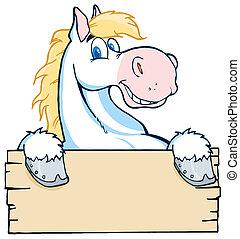 látszó, ló, fehér, felett, tiszta
