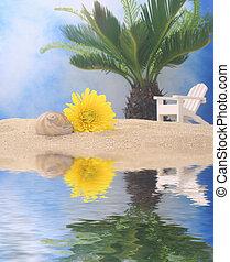 látszat tengerpart, virág