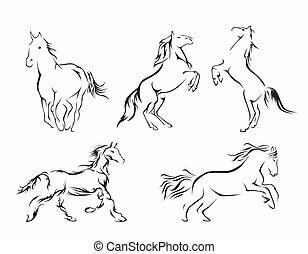 ló, állhatatos, gyűjtés