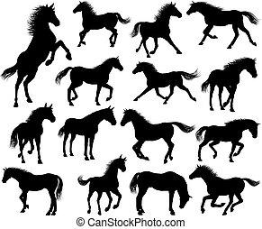 ló, állhatatos, körvonal