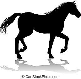 ló, árnykép, állat