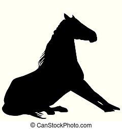 ló, árnykép, ülés