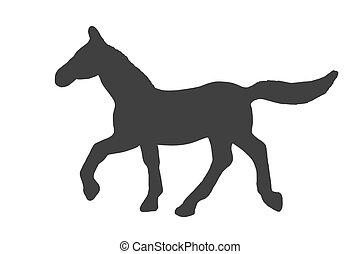 ló, árnykép, elszigetelt, háttér., fekete, fehér