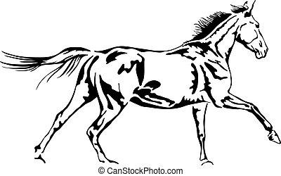 ló, áttekintés, vektor, fekete, fehér, galoppozó