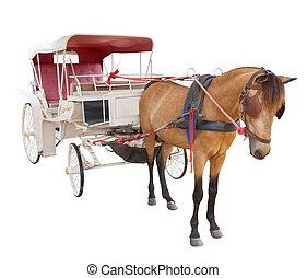 ló, alkalmaz, elszigetelt, mese, kocsi, háttér, tündér, fehér, fülke