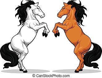 ló, csődör, vagy, táncolás