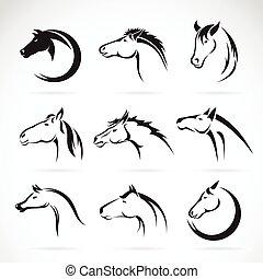 ló, csoport, fej, háttér., vektor, tervezés, fehér