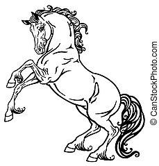 ló, fehér, fekete
