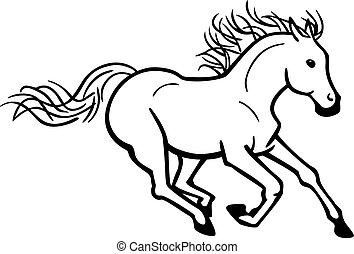 ló, galoppozó