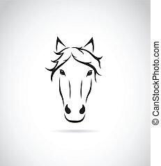 ló, kép, arc, vektor, háttér, fehér