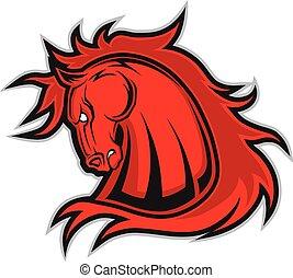 ló, kabala, fej, amerikai félvad ló, vagy