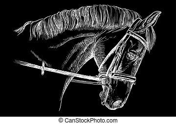 ló, kantár, fej