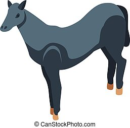 ló, mód, fiatal, ikon, isometric, fekete