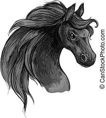 ló, művészet, dühöngő, portrait., eyes., amerikai félvad ló