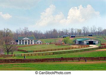 ló ranch, kentucky