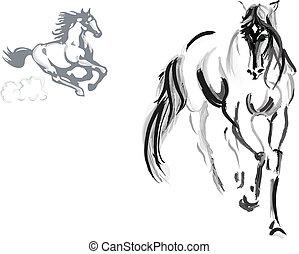 ló, skicc