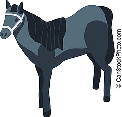 ló, sport, mód, ikon, isometric, fekete