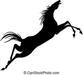 ló ugrás, árnykép