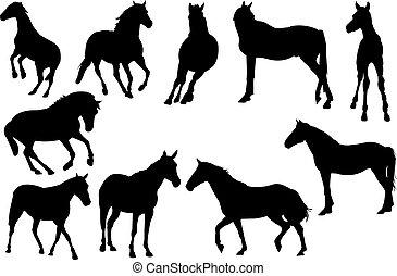 ló, vektor, árnykép, ábra
