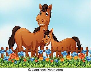 ló, virág kert, család