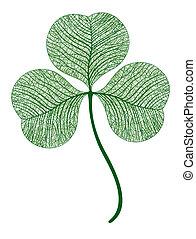 lóhere, levél növényen, illustration., isolated., makro, vektor