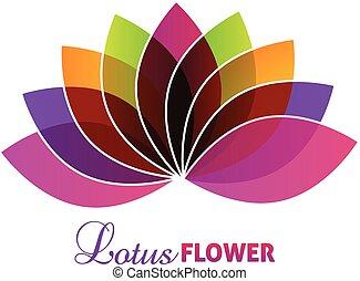 lótusz, jel, virág, bíbor