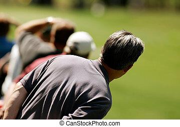 labda, golf, néző, várakozik