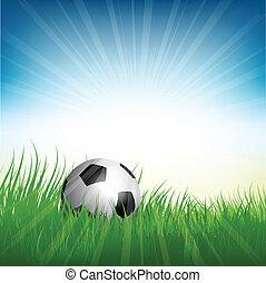 labda, madárfióka, labdarúgás, fű, futball, vagy