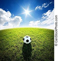 labdarúgás, stadion, sport, kék ég, fű, futball, zöld terep