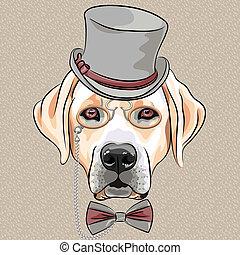 labrador, fajta, kutya, vektor, csípőre szabott, súlyos, karikatúra, vizsla