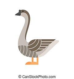 lakás, mód, vektor, ábra, goose.