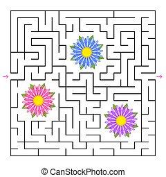 lakás, minden, derékszögben, illustration., labyrinth., egyszerű, elszigetelt, gyűjt, vektor, irány, menstruáció, maze., talál, ki