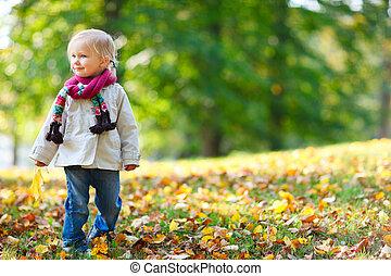 leány, liget, ősz, totyogó kisgyerek