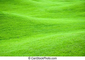 legelő, 2, zöld