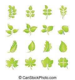 levél növényen, állhatatos, ikonok, zöld