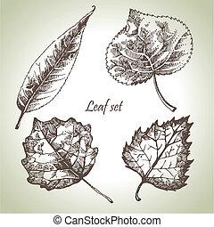 levél növényen, állhatatos, kéz, húzott
