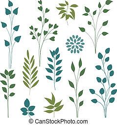 levél növényen, elements.