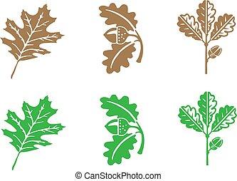 levél növényen, elszigetelt, fehér, ikon, háttér, tölgy