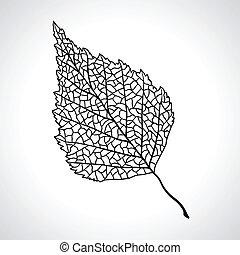 levél növényen, isolated., makro, fa, fekete, nyírfa